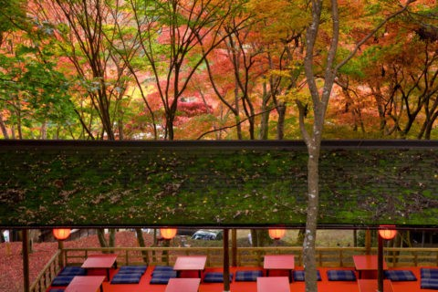 紅葉と高雄硯石亭茶席