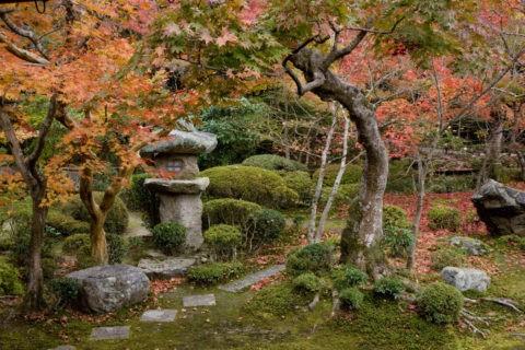 紅葉の圓光寺庭園