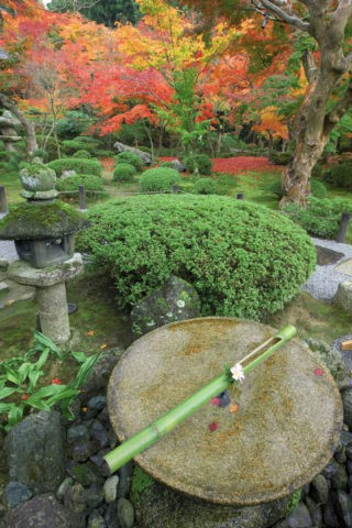 紅葉の圓光寺庭園 水琴窟