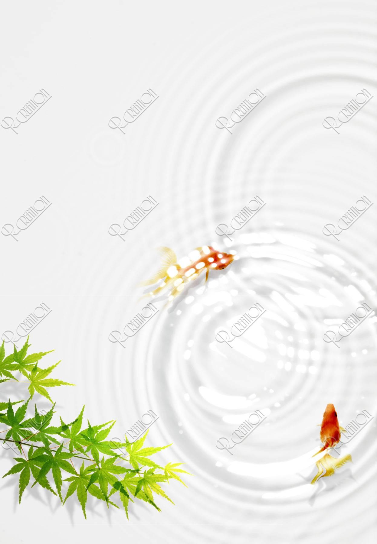 金魚と波紋