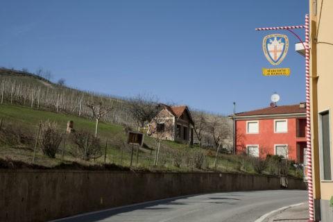 ワイン看板とバローロのブドウ畑