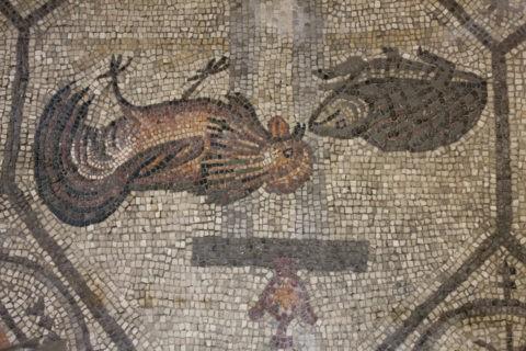 アクレイア 大聖堂 モザイク 世界遺産