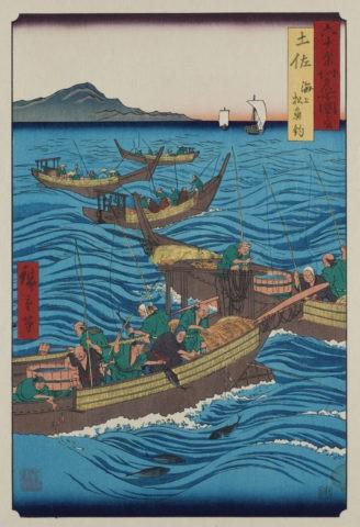 六十余州名所図会 土佐 海上松魚釣