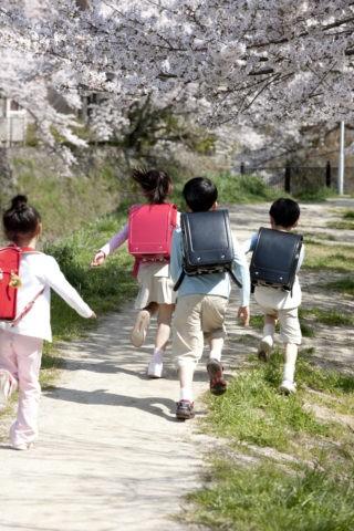 桜の道を走る小学生