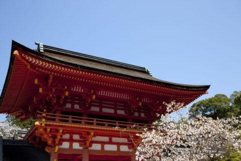 下鴨神社 桜と楼門 W