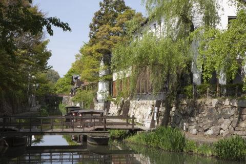 新緑の八幡堀
