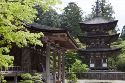 西明寺三重塔と本堂