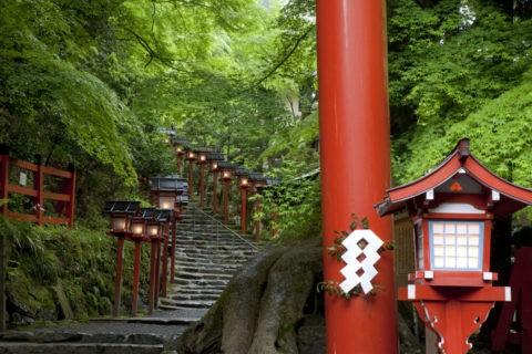 新緑と貴船神社参道