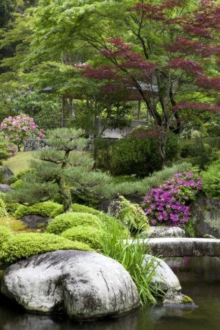 三室戸寺の与楽苑