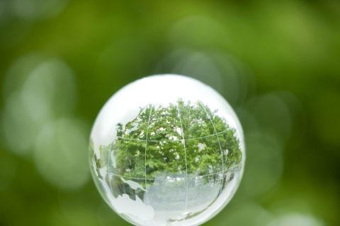 緑の映る地球儀