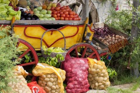 ブルガリアの農作物、果物