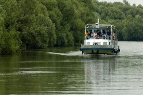 ドナウデルタの観光船 世界遺産