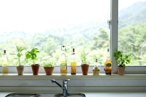 キッチン窓辺の瓶とハーブ