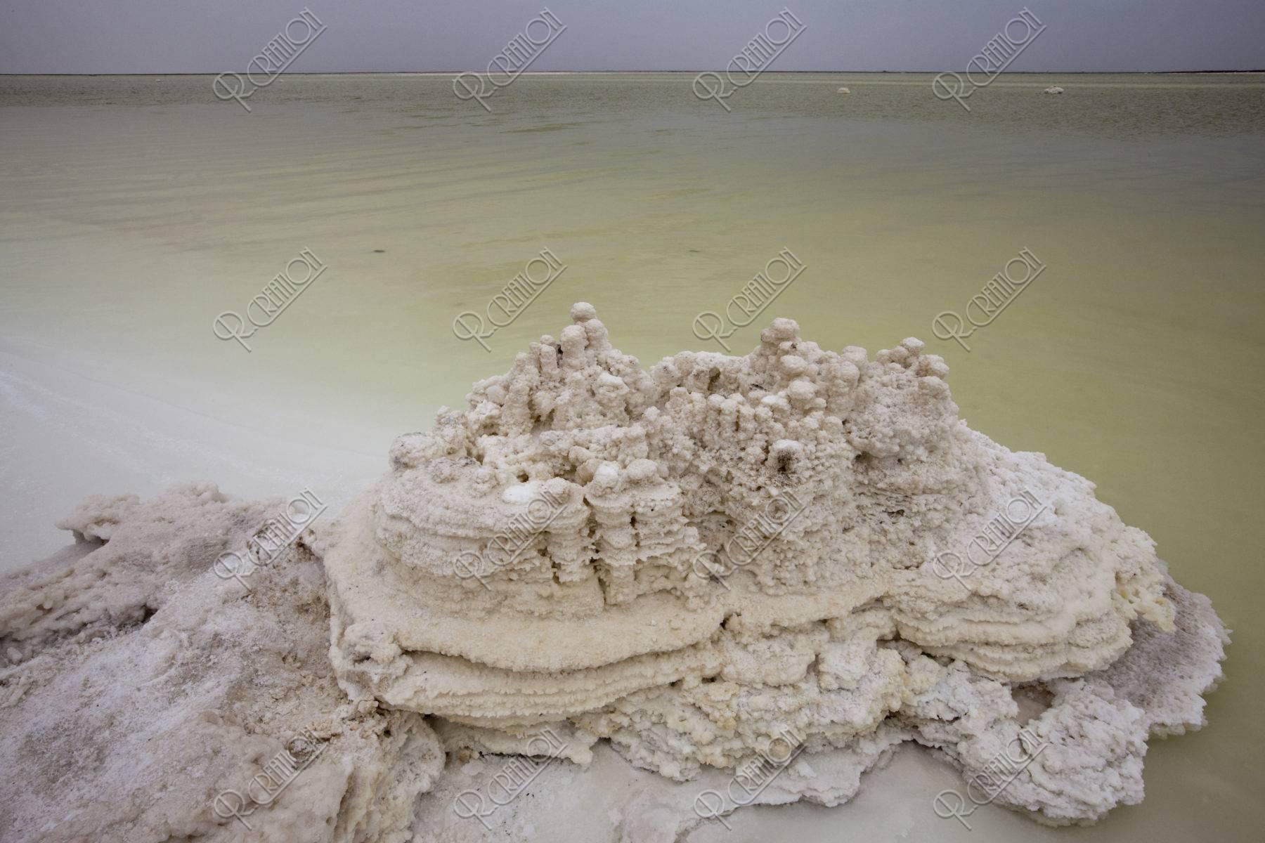 チャルカン塩湖 塩の花