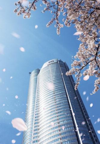 六本木ヒルズに舞う桜