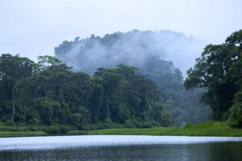 トルトゥゲーロ国立公園 ペニテンス運河