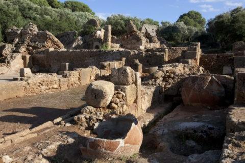 ティパサの考古遺跡 魚醤のかめ 世界遺産
