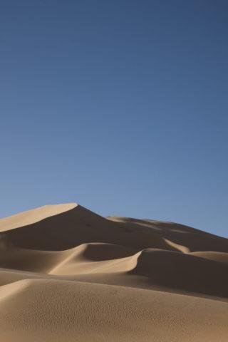 風紋とサハラ砂漠の砂丘 世界遺産