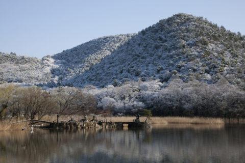広沢池雪景色