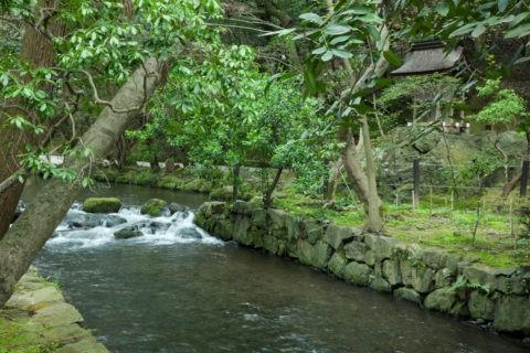 上賀茂神社 ならの小川 世界遺産