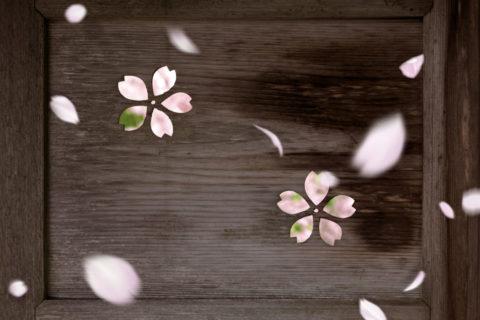 勝持寺(花の寺)の木戸の桜紋