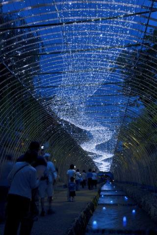 京の七夕 天の川
