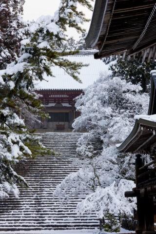 神護寺 金堂