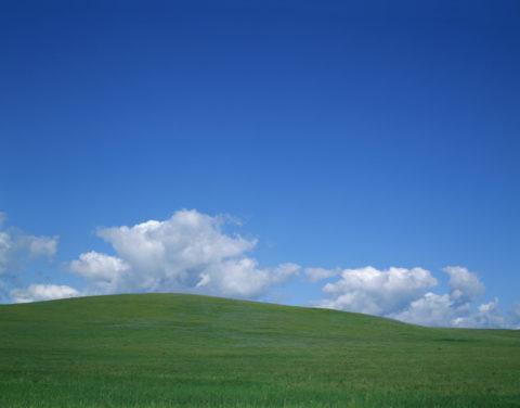 草原 カルフォルニア北部