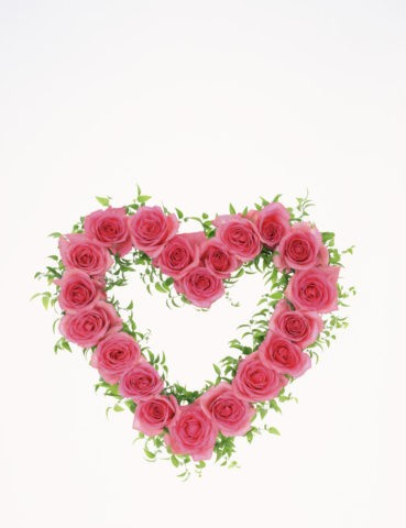 ピンクのバラのハート
