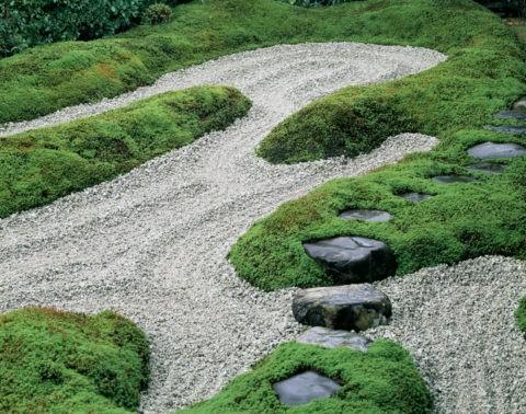 大徳寺 瑞峯院 苔と飛石