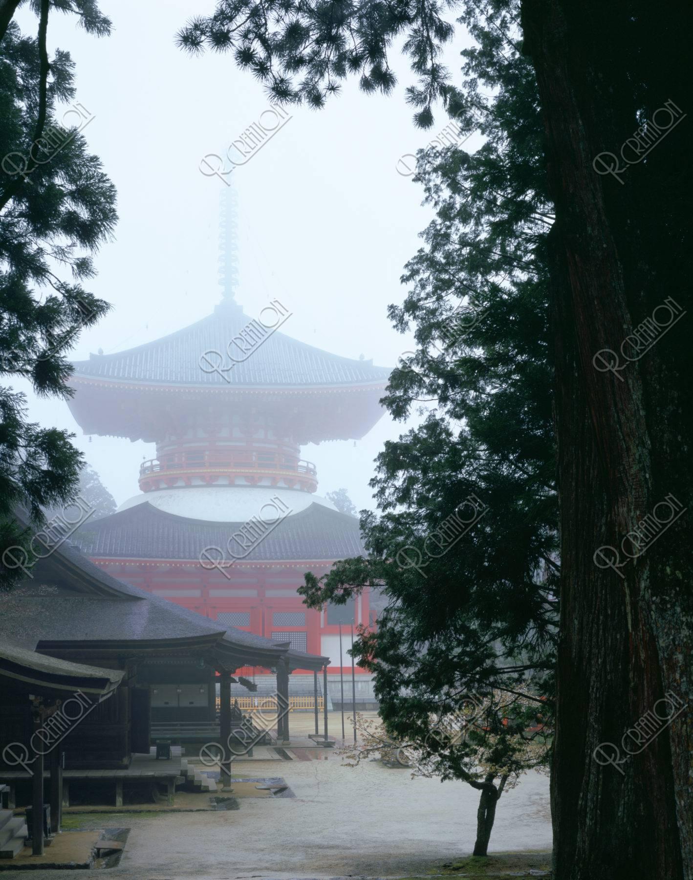 杉林とかすむ高野山大塔