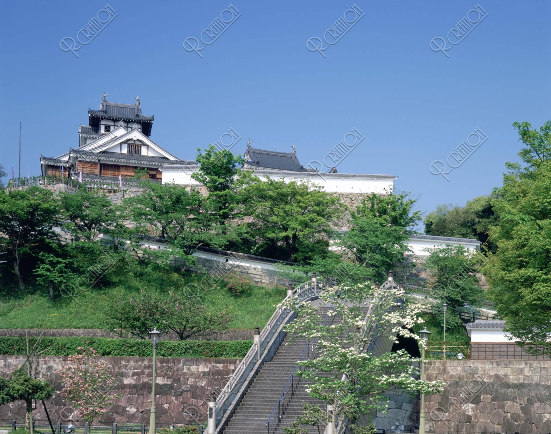 新緑の福知山城