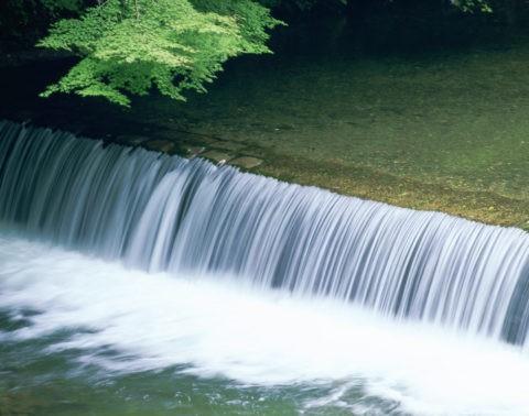 清滝川とモミジ