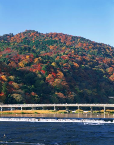 嵐山 渡月橋ともみじの山並み