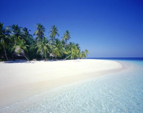 ヤシの浜辺 マルジブ