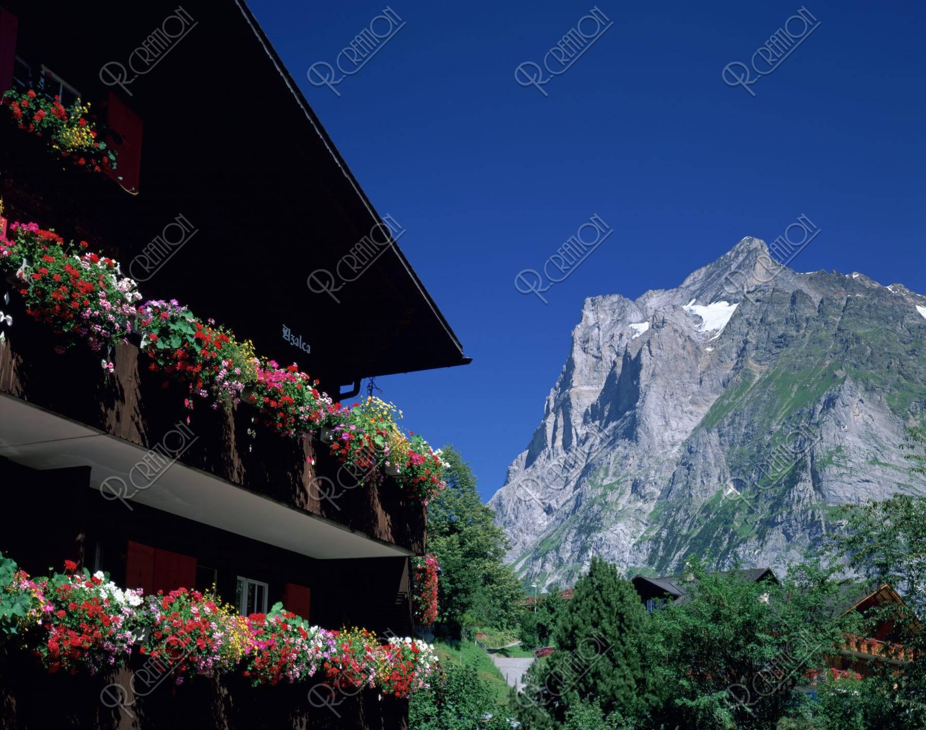 花飾りのある家と山