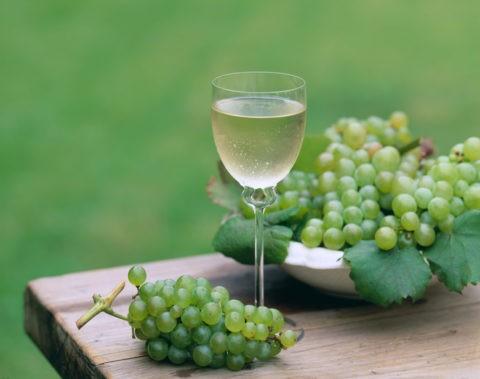 テーブルの上の白ワインとぶどう