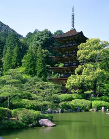 新緑の瑠璃光寺 五重塔