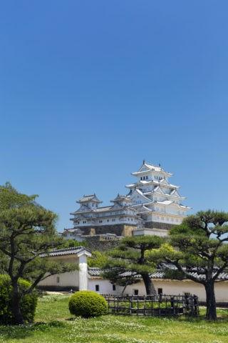 新緑の姫路城