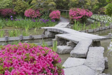 梅宮大社 庭園