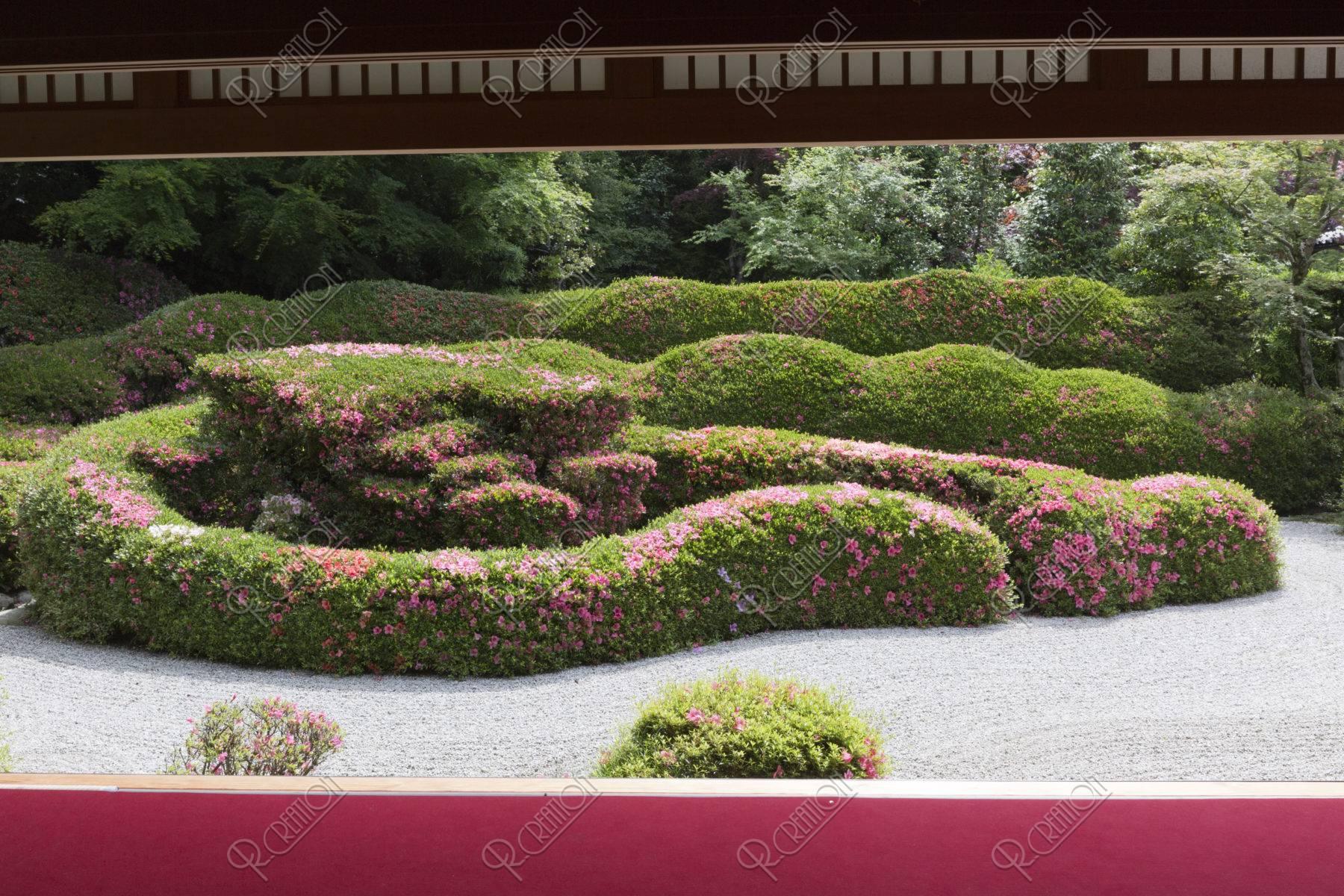 大池寺 庭園