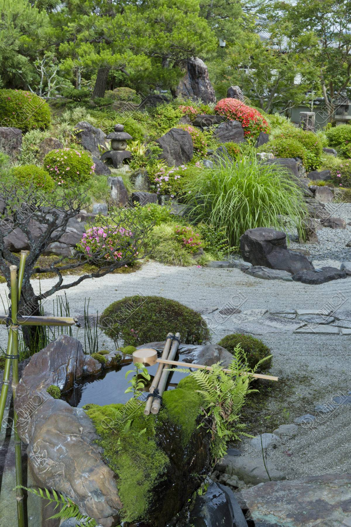 妙満寺 庭園
