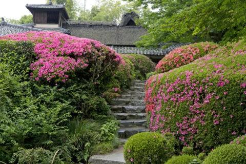 詩仙堂 庭園