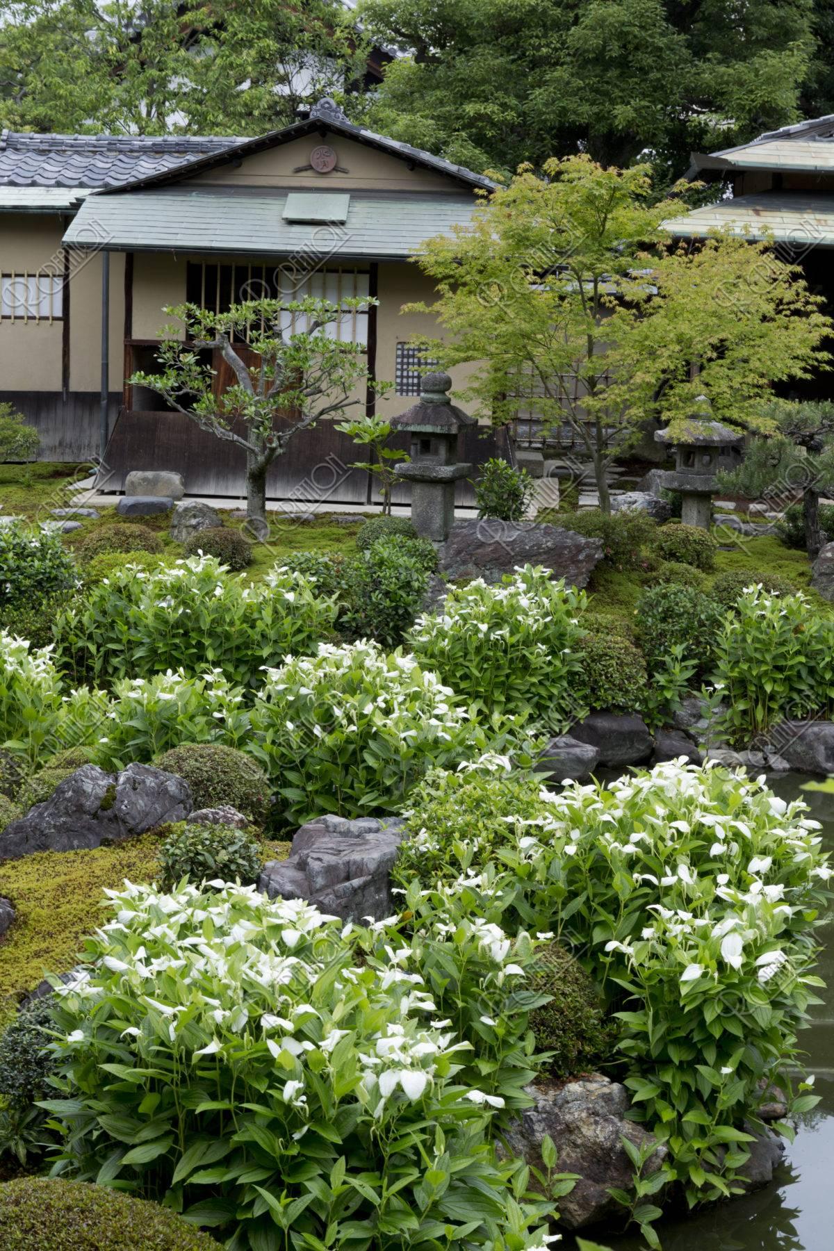 両足院 庭園