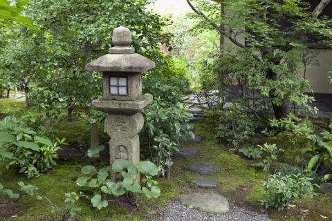 石灯篭と飛び石と新緑