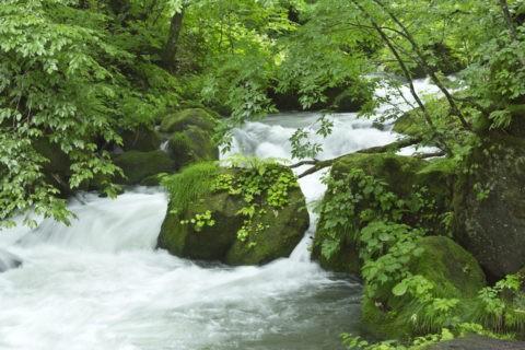 奥入瀬 阿修羅の流れ
