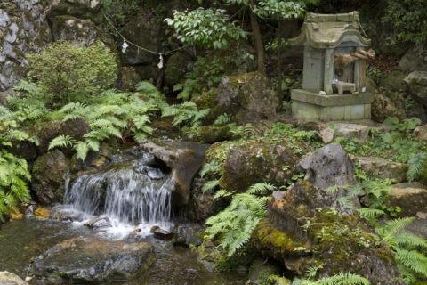 泉神社 名水百選