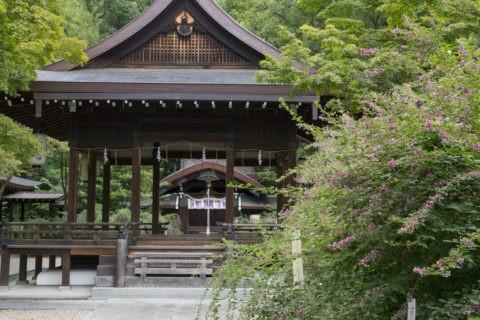 梨木神社 萩