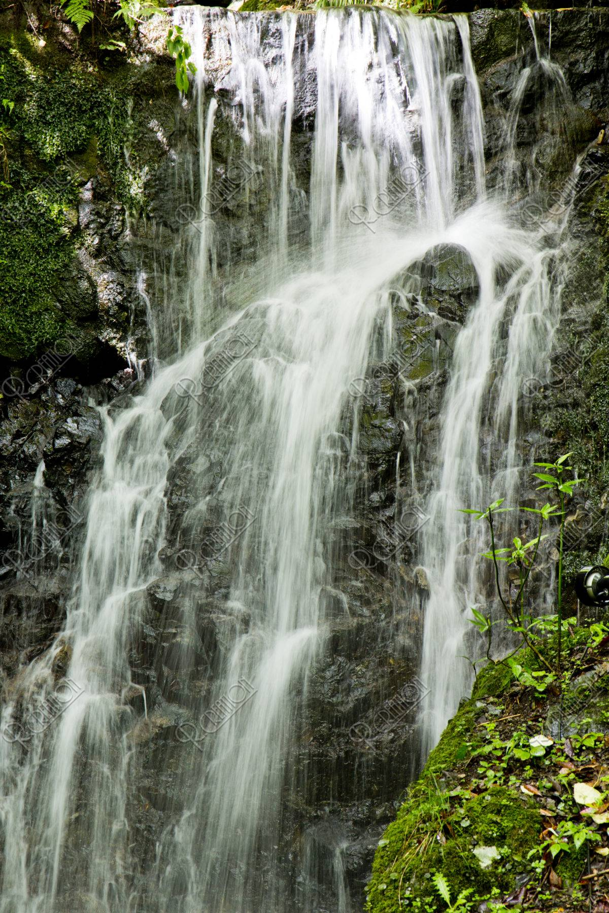 貴船神社 滝