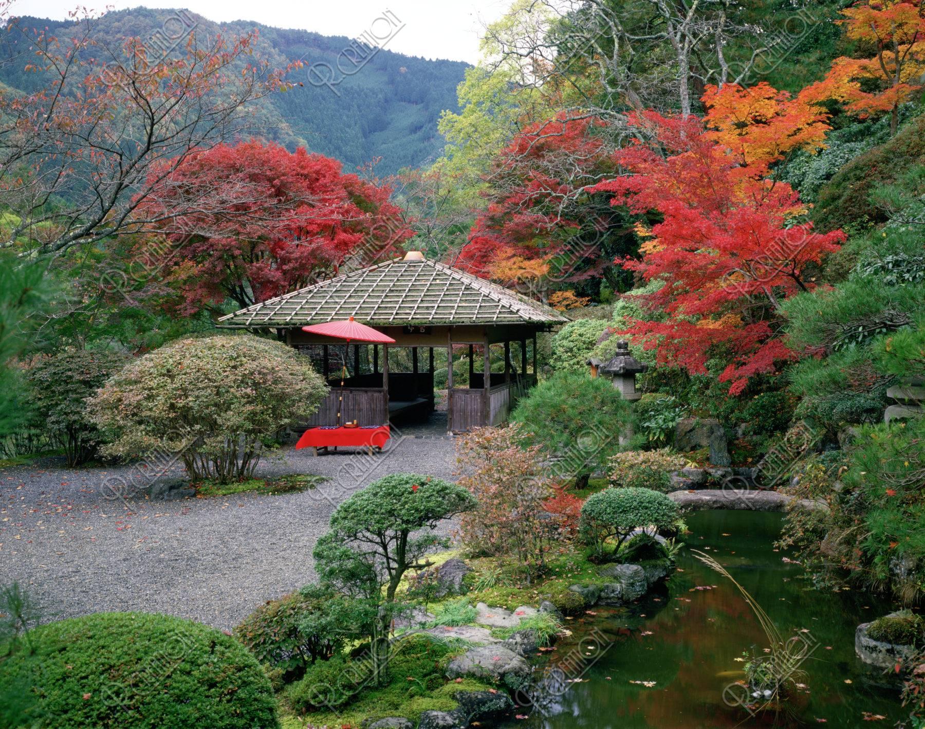 白龍園の秋